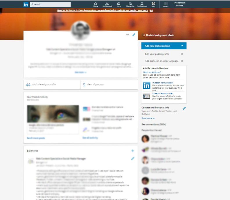 Pagina profilo Linkedin