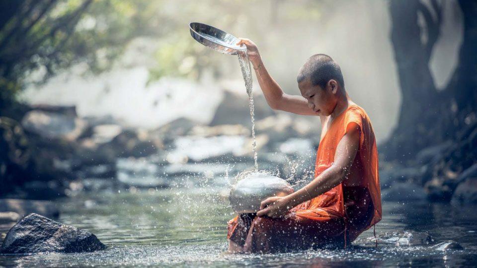Diritto alla vita e diritto all'acqua, estrogeni